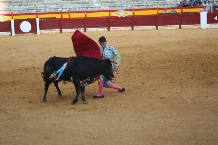 corrida students
